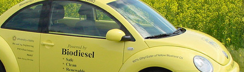 Biodiesel-fueled car from Idaho University