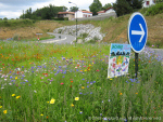 Basque homes, from a roundabout planted with wild flowers