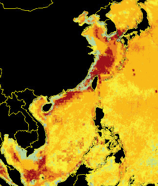 Pollution in the seas around south-east Asia.