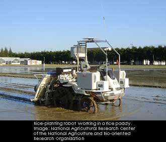 Rice-planting robot working in a rice paddy. Image: National Agricultural Research Center of the National Agriculture and Bio-oriented Research Organization