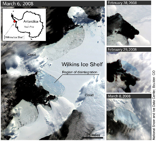 Wilkins ice shelf break-up sequence. Image: NSIDC