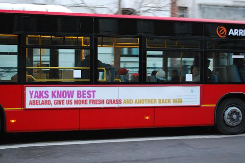 abelard's yaks' bus advert. Source: ruletheweb.co.uk