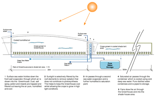 Diagram showing how the seawater greenhouse functions. Image: seawatergreenhouse.com