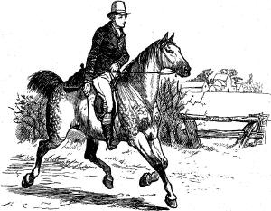 A hunter. Illustration by Randolph  Caldecott