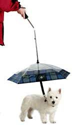 pet umbrella. Image credit:Rescue Pet Store
